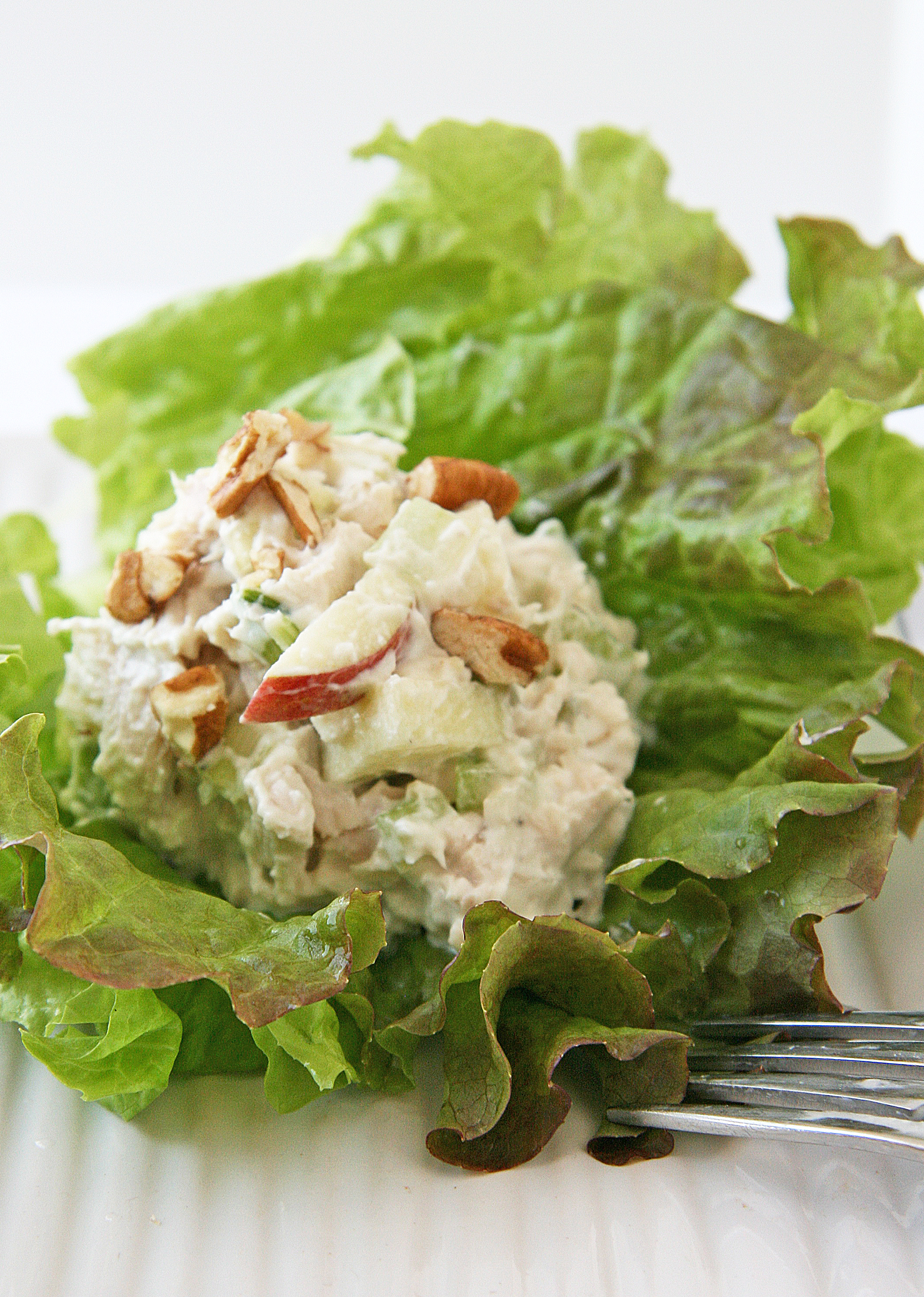 Rosemary Apple Chicken Salad2