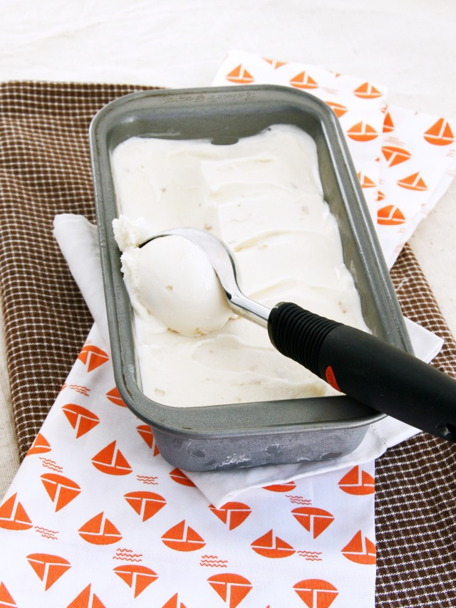 toasted coconut ice cream scoop1