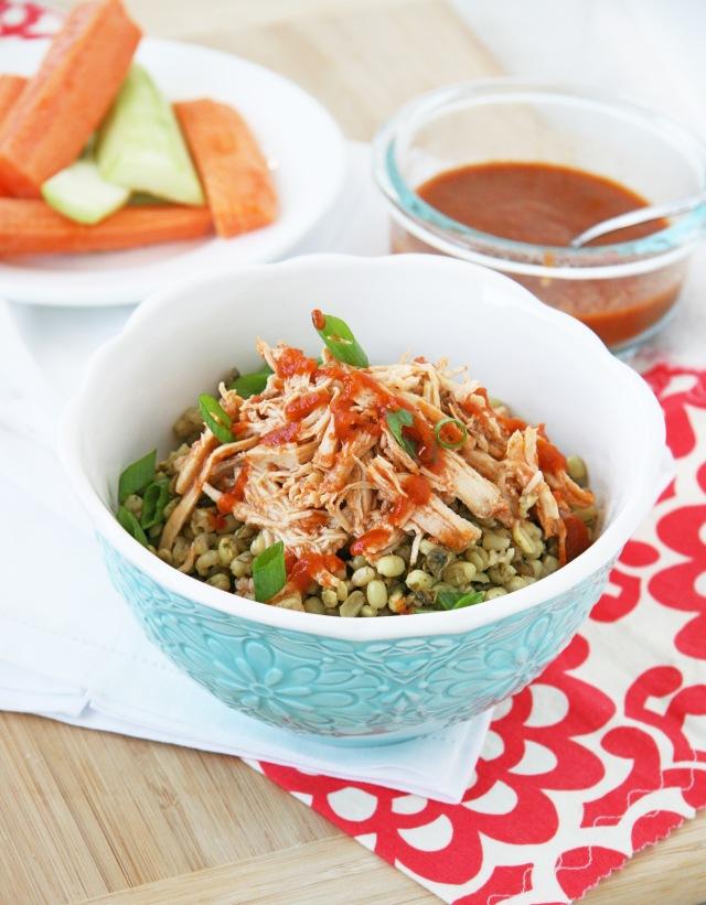 shredded bbq chicken rice pilaf
