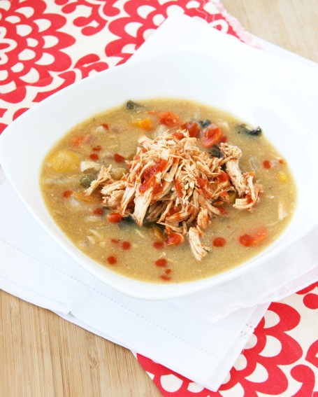 shredded bbq chicken veggie soup